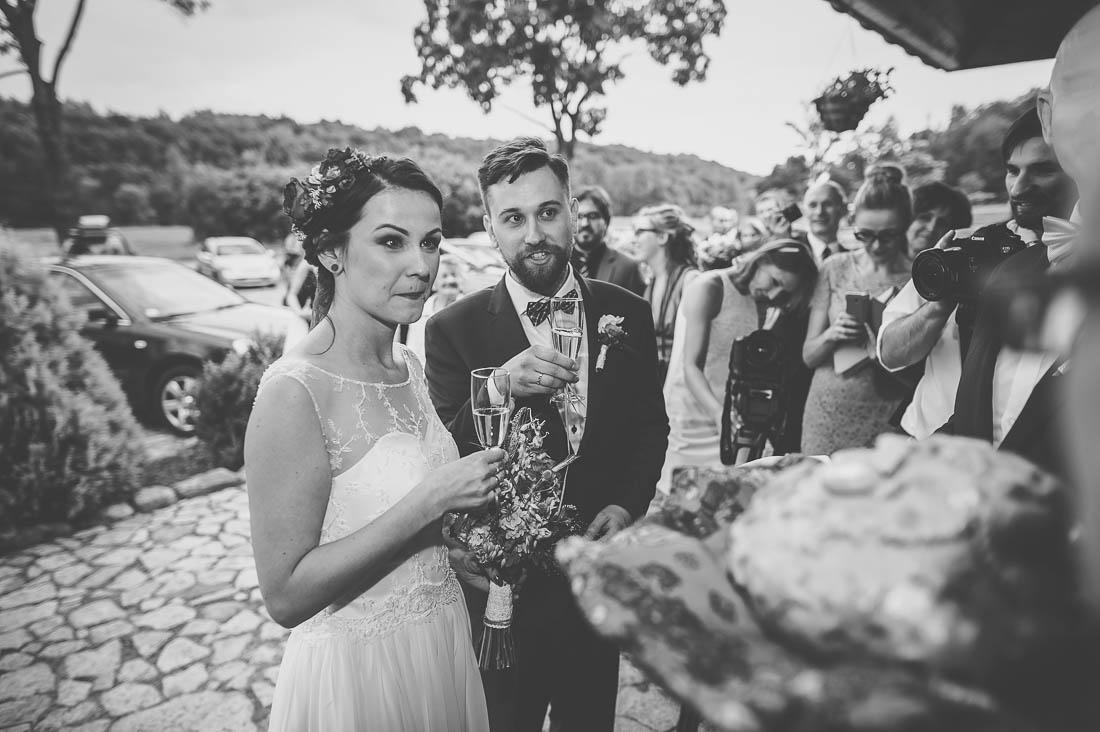 zdjęcia ślubne Nałęczów