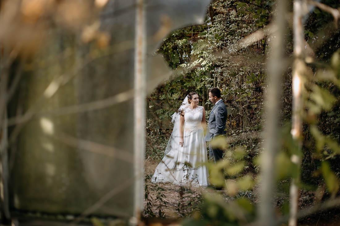 plener ślubny w opuszczonej szklarni