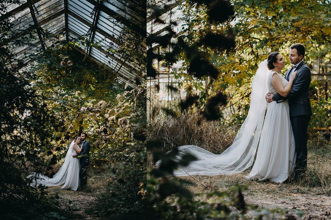 sesja ślubna w szklarni Ryki