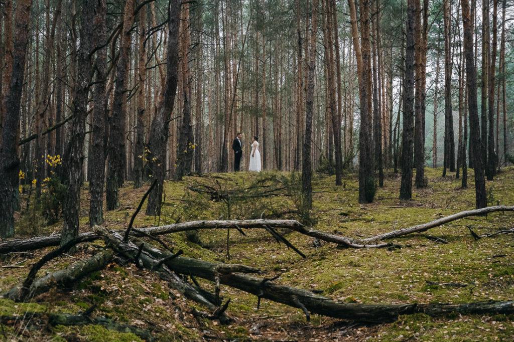 fotografia ślubna Radom